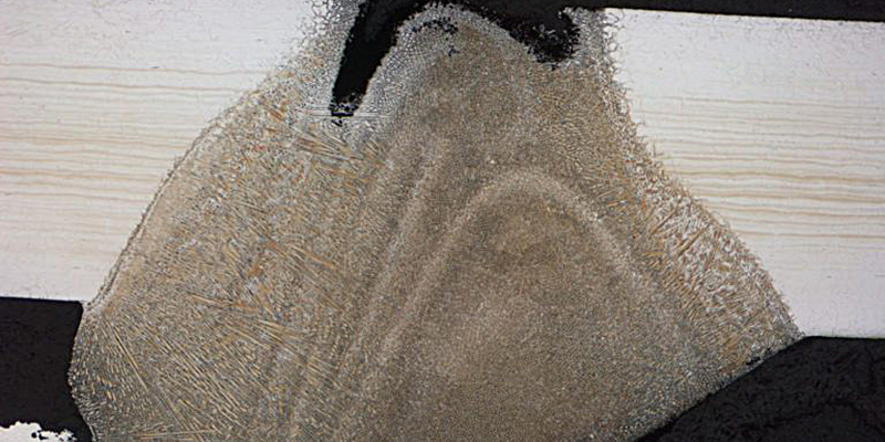 METALogic - Your Corrosion Partner - TÜV AUSTRIA Group